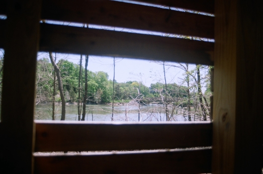 Looking through wooden slats