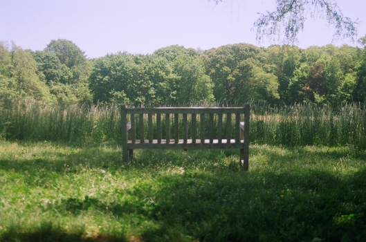 Bench to nowhere